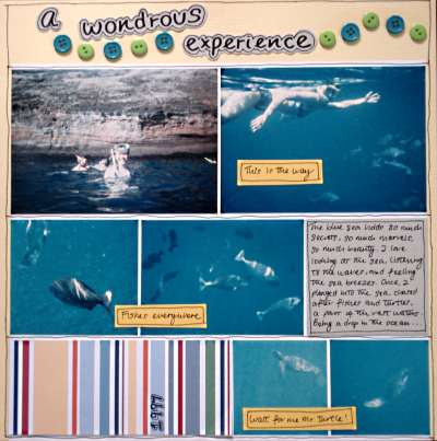 Interior Layout Design Ideas scrapbooking layout design ideas for beginners on a snorkeling trip in hawaii