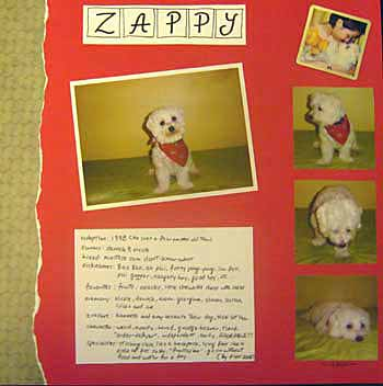 Scrapbook layout about our pet dog, Zappy.